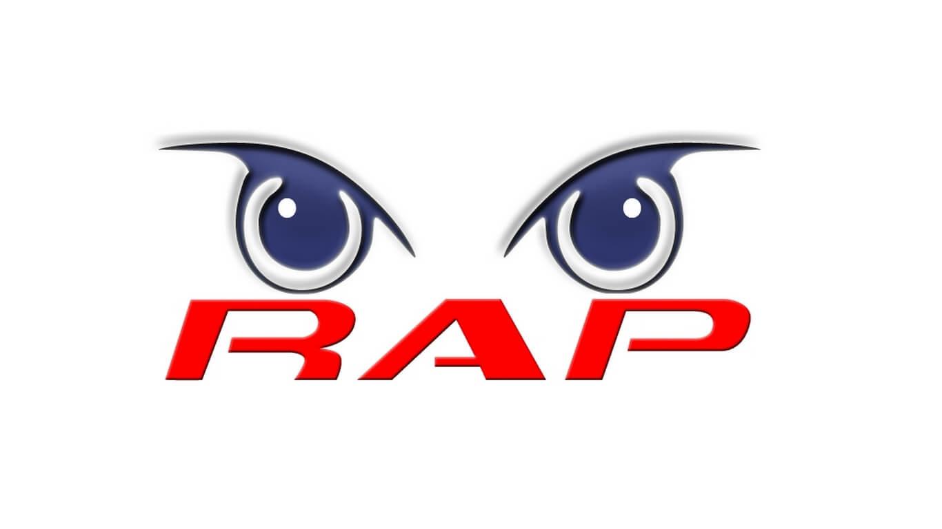 RAP - Segurança Electrónica