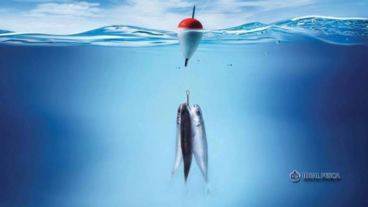 Ideal Pesca